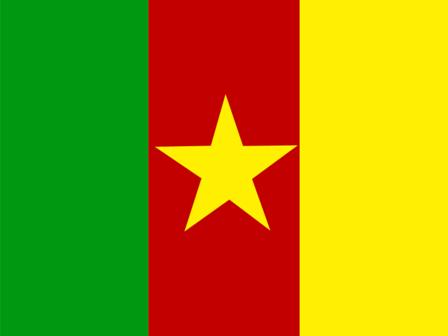 cheap international calls to Cameroon