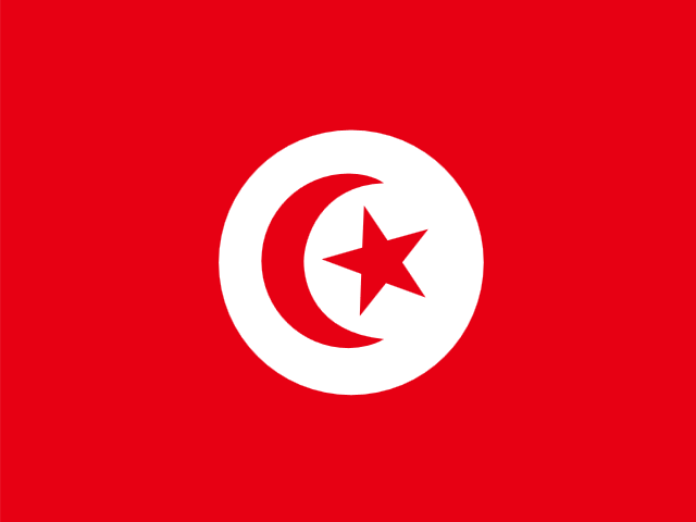 cheap international calls to Tunisia